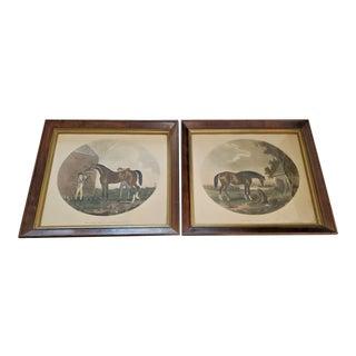 Pair of 19c Thomas Gooch Horse Aquatints For Sale