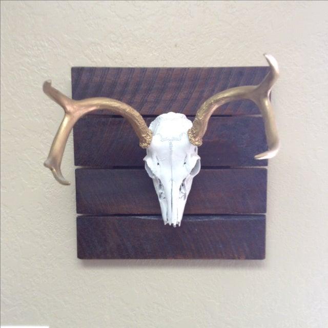 Deer Skull on Reclaimed Wood - Image 2 of 5