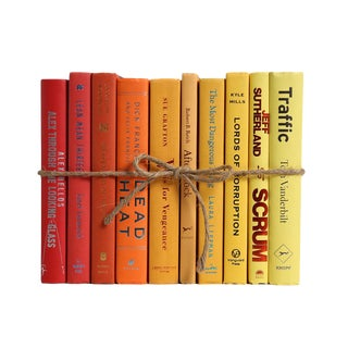 Modern Sunburst Ombré ColorPak : Decorative Books in Shades of Red to Yellow For Sale
