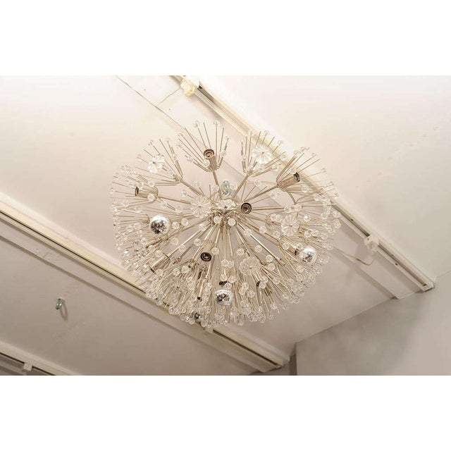 Ceiling Hanging Austrian Chandelier For Sale In New York - Image 6 of 7