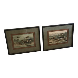 Birds on a Beach John Richard Framed Art - A Pair For Sale