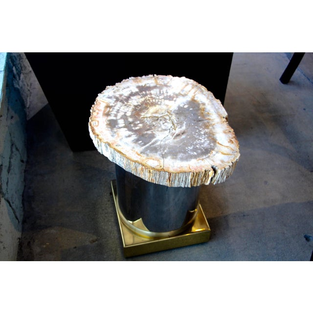 Mid 20th Century Petrified Wood Table With Brass and Chrome Base For Sale - Image 5 of 13