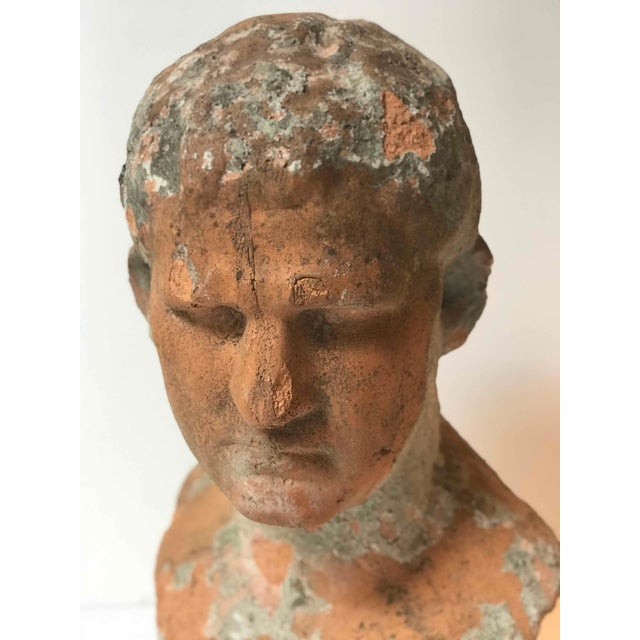 Terra cotta bust of man with cement remnants from France.