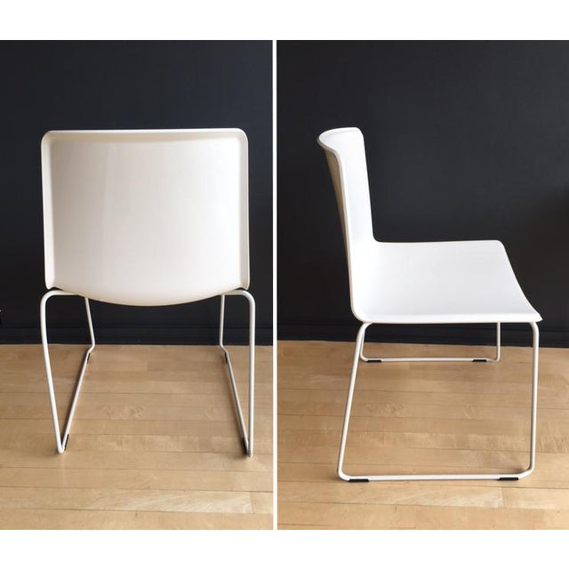 Pedrali #897 Tweet Chairs - Set of 4 - Image 4 of 7