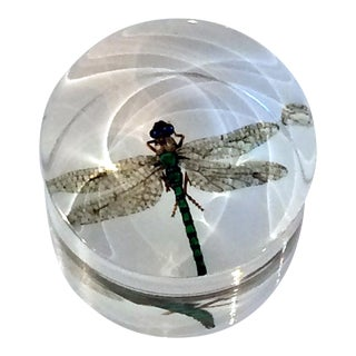 DWM   MALOOS Dragonfly Lucite Paperweight For Sale