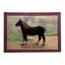 20th Century American Country style oil painting of horse Italian Draught (signed BENEDETTO) For Sale