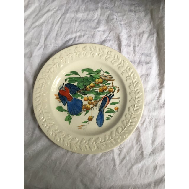 Florida Jay Adams England Transferware Ceramic Plate - Image 2 of 11