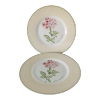 "Modern Villeroy & Boch ""Florea Floris"" Pattern Set of 2 Salad Plates For Sale"