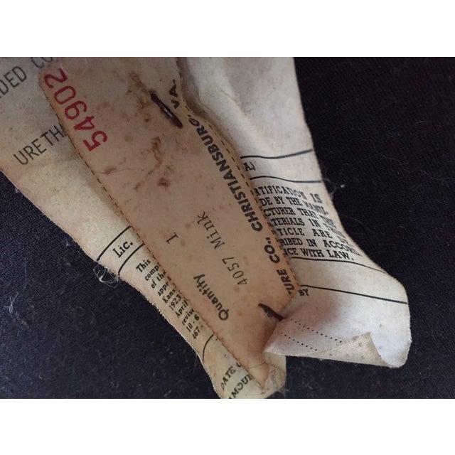 Vintage Mink Velvet Hollywood Regency Cane Bench - Image 10 of 11
