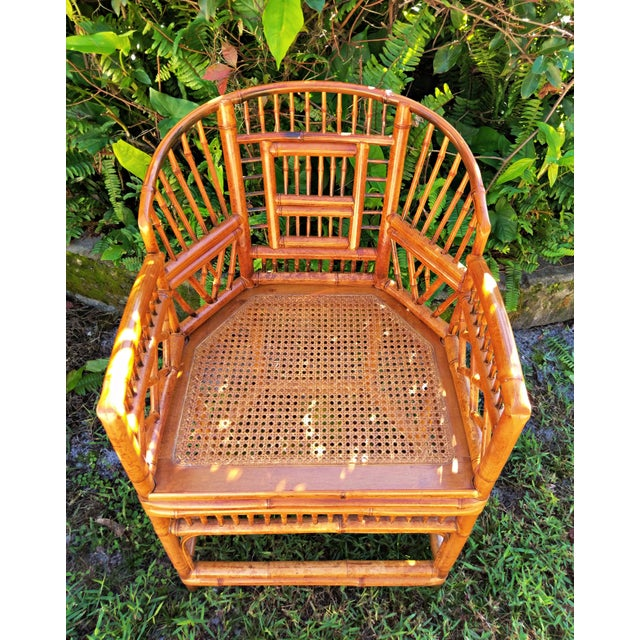Mid 20th Century Vintage Mid Century Brighton Tiger Bamboo Chairs- A Pair For Sale - Image 5 of 13