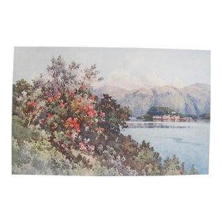 1905 Original Italian Print - Italian Travel Colour Plate - Roses, Villa Carlotta, Lago DI Como For Sale