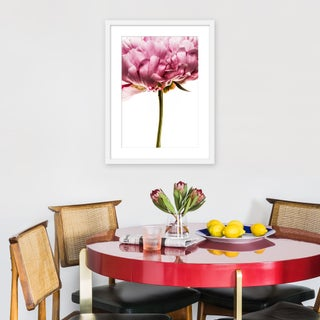 """Medium """"Peony in Bloom I"""" Print by David Knight, 19"""" X 25"""" Preview"""