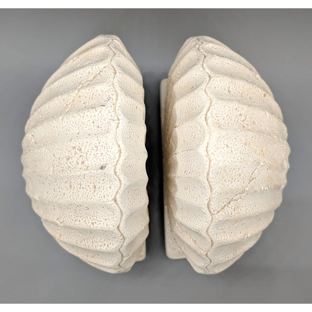 1980s Late 20th Century Off-White Scallop/ Clam Shell Bookends - a Pair For Sale - Image 5 of 9