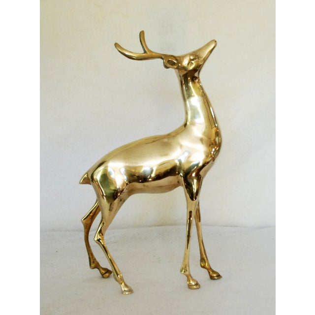 Vintage Solid Brass Buck - Image 2 of 6