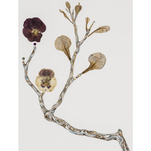 Soft Buds watercolor, pressed foliage, and mixed media on paper by Marilla Palmer - Image 1 of 2