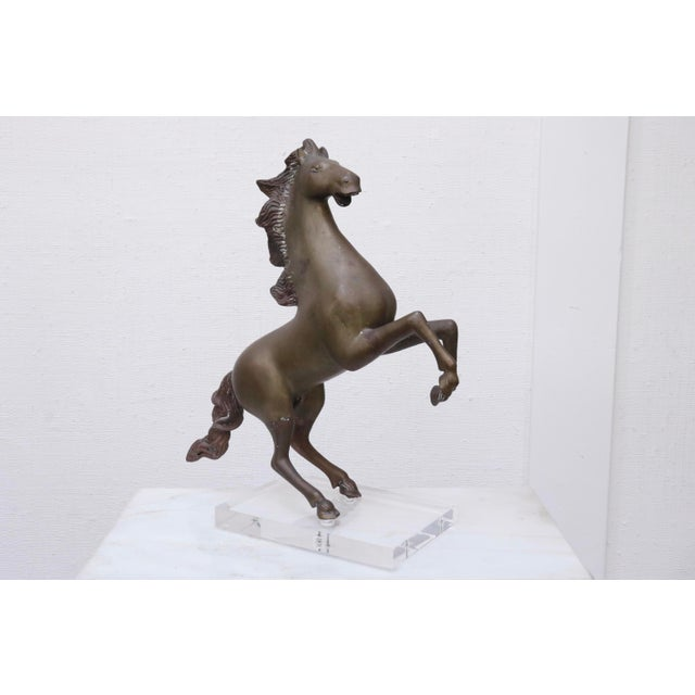 Rearing Horse Sculpture in Brass on Lucite For Sale - Image 4 of 11