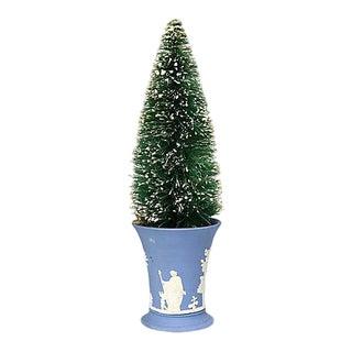 Mid 20th Century Bottle Brush Tree W/ Wedgwood Pot For Sale