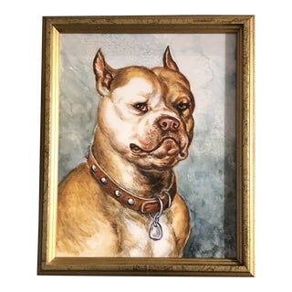 Original Vintage Pit Bull Terrier Watercolor Painting Signed For Sale