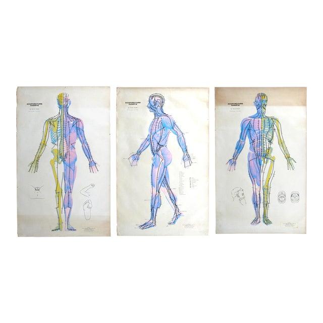 Vintage Acupuncture Serigraphs on Linen by Felix Mann - Set of 3 For Sale