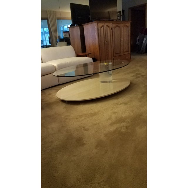 1970s Lion in Frost Coffee Table For Sale - Image 10 of 10