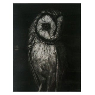 Art Print - Barn Owl by Sylvia Roth