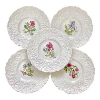 Royal Cauldon Woodstock Floral Plates - Set of 5 For Sale