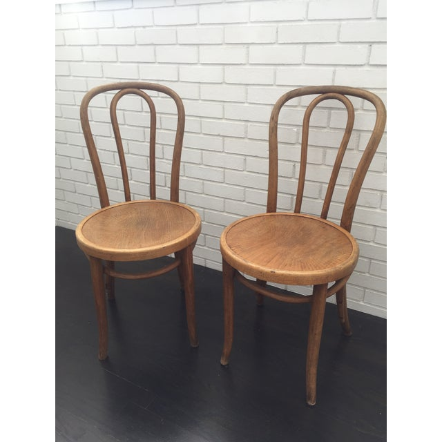This Pair of vintage Thonet side chairs are beautifully worn and very  sturdy. - Antique Thonet No. 18 Bentwood Chairs - A Pair Chairish