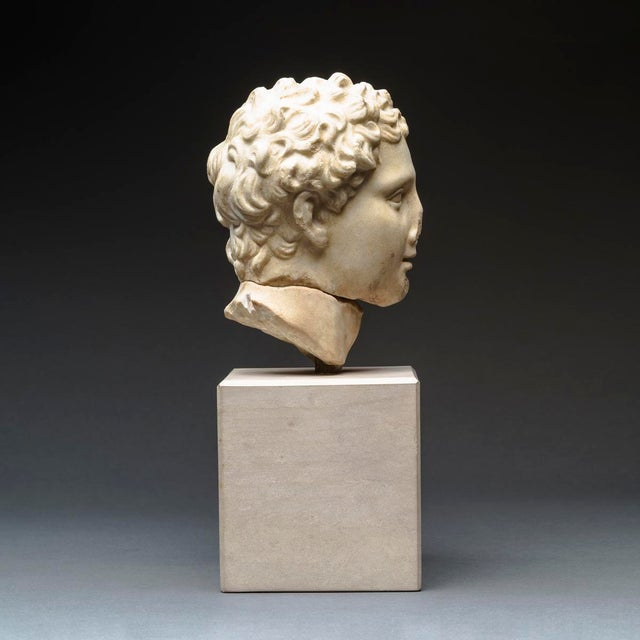 15th Century & Earlier Hellenistic Marble Head of Alexander the Great For Sale - Image 5 of 8