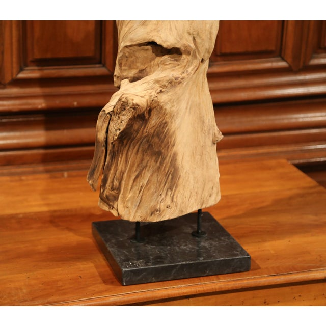 This beautiful, carved, driftwood sculpture was made from a single ficus tree. This enormous reclaimed tree root has a...
