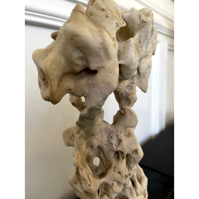 Chinese White Scholar Stone from Taihu Lake on Display Stand For Sale - Image 4 of 13