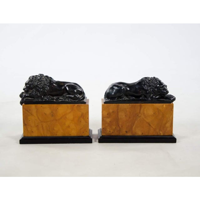 Italian Italian Neoclassical Style Lion Bookends - a Pair For Sale - Image 3 of 9