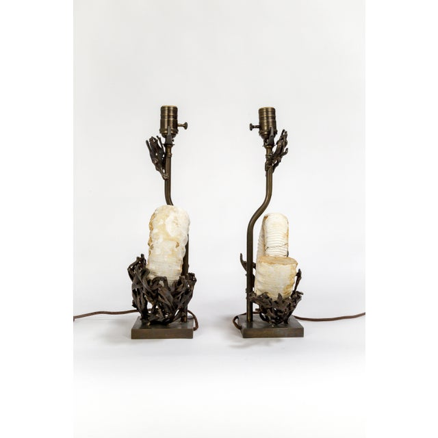 Bronze Fossilized Nautilus & Bronze Laurasia Table Lamp by Tuell + Reynolds (2 Available) For Sale - Image 7 of 13