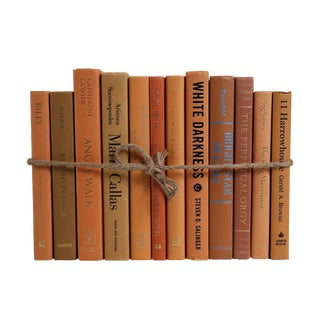 Modern Canyon ColorPak : Decorative Books in Shades of Brown and Caramel For Sale
