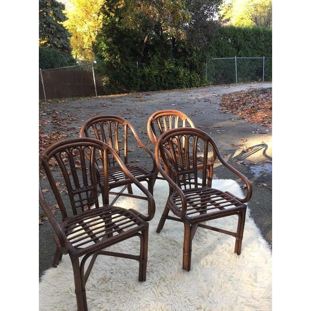 Vintage Rattan Chairs - Set of 4 - Image 8 of 8