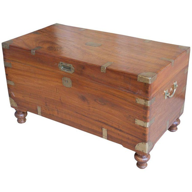 Gold Late 19th Century British Campaign Camphor Sea Chest For Sale - Image 8 of 8