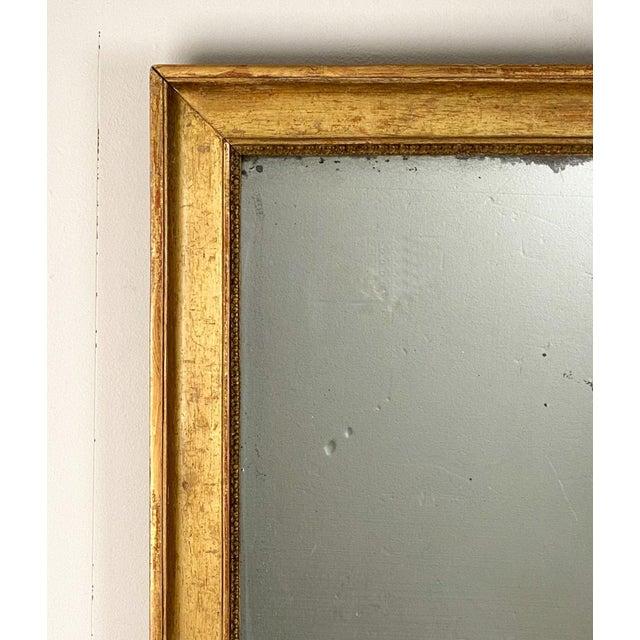 A 19th Century French gilt wood mirror