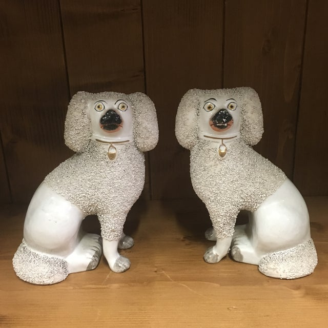 Antique Staffordshire Poodles - A Pair For Sale - Image 9 of 9