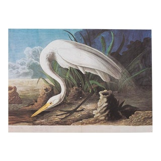 1966 Audubon White Heron Lithograph For Sale