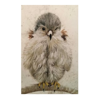 Baby Bird 1 Drawing by Marianne Stikas For Sale