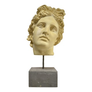 NeoClassical Plaster Bust Sculpture - Greek God's Head on Stone Base For Sale