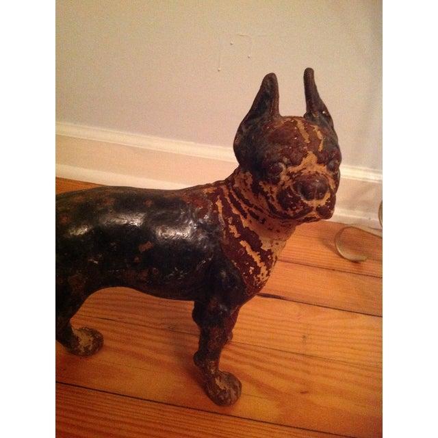 Vintage Cast Iron Boston Bull Terrier Door Stop Chairish