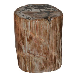 Designer Quality Ancient Petrified Wood Side Table