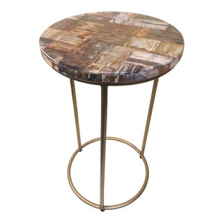 Organic Modern Petrified Wood Table Top For Sale