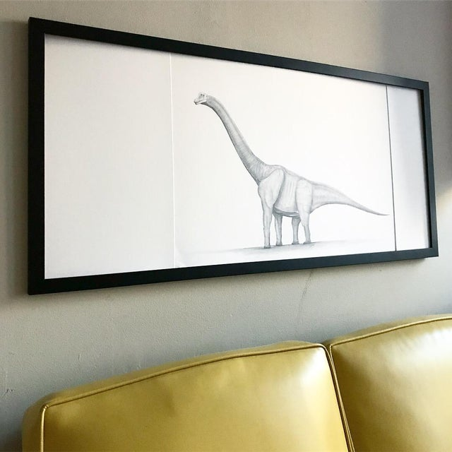 "Original graphite drawing of a Brachiosaurus framed in a 1"" matt-black wood frame with unique matching white matting...."