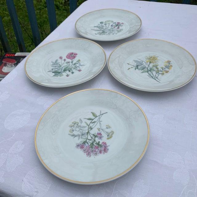 Ceramic 1970s Richard Ginori Primavera Salad Plates - Set of 4 For Sale - Image 7 of 7
