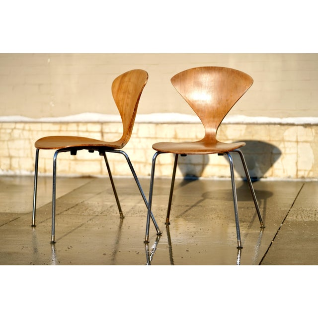 Norman Cherner 1950s Vintage Norman Cherner Designed Plycraft Chairs on Chrome Bases- 2 Available. For Sale - Image 4 of 9