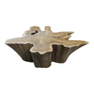 Organic Modern Natural Wood Color Teak Root Coffee Table For Sale