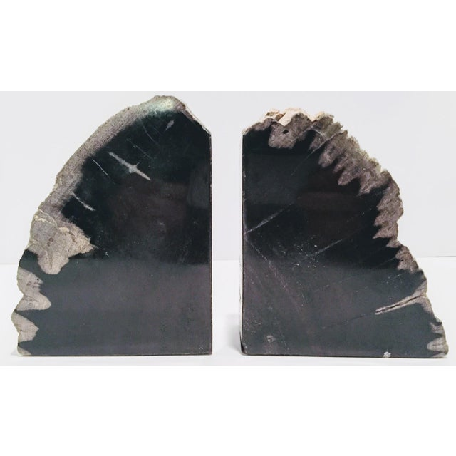 Pair of Petrified Wood Bookends - Image 9 of 13