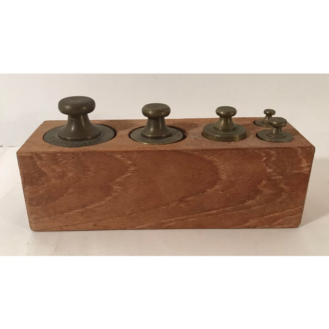 Gold Vintage Brass Weights in Wooden Case - Set of 5 For Sale - Image 8 of 11
