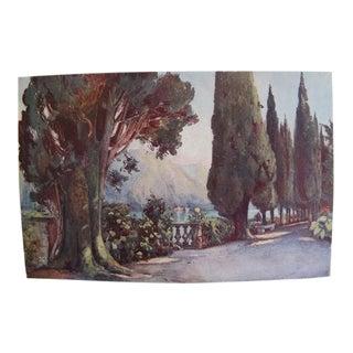 1905 Original Italian Print - Italian Travel Colour Plate - Cypress Avenue, Villa Del Pizzo, Lago DI Como For Sale